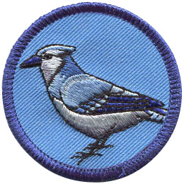 This merrow bordered circle badge displays the side view of a blue jay.