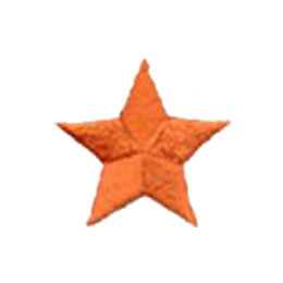 Star, Orange, Patch, Embroidered Patch, Merit Badge, Badge, Emblem, Iron On, Iron-On, Crest, Lapel Pin, Insignia, Girl Scouts, Boy Scouts, Girl Guides