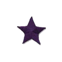 Star - Purple