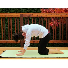 <p>Step 2: Look up. As you breathe out, curve your back in the opposite direction. Drop your head and look down as your back rounds and tuck your tailbone under. Repeat once more.</p>