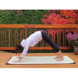 <p>Become a yogi or yogini by trying out the Downward Facing Dog Pose. Visualize a dog stretching and reaching its front paws out.</p>